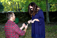 Greyson and Ally's Engagement